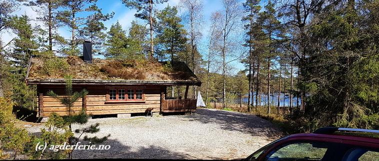 302 Vennesla. Hund ok. Laftet Skogs hytte.  Robåt.