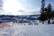 vinterbilde_bortelid_1
